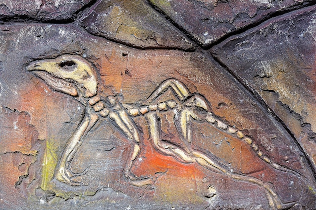Künstlich von alten fossilen organismen auf steinmauer
