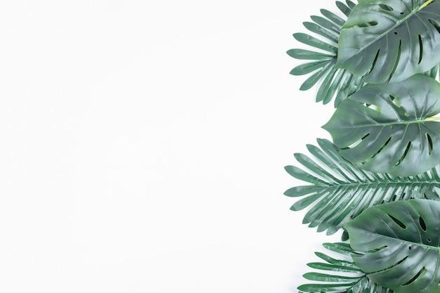 Künstliche grüne blätter auf weiß.