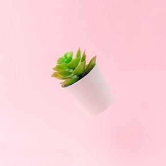 Künstliche pflanze auf hellrosa hintergrund.