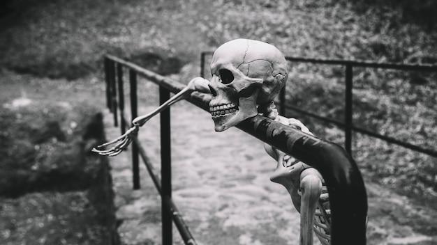 Künstliches skelett, das weg schaut, stillstehend auf brüstung
