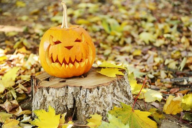 Kürbis für feiertag halloween auf altem baumstumpf