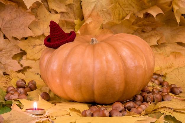 Kürbis für halloween mit rotem hut und kerze auf dem laub mit haselnüssen