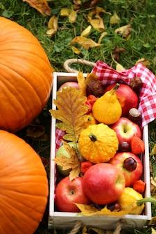 Kürbise, äpfel, kastanien und gelbblätter auf einem kasten
