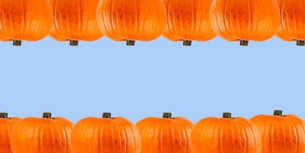 Kürbisse auf blauem grund. halloween-hintergrund. banner. platz kopieren.