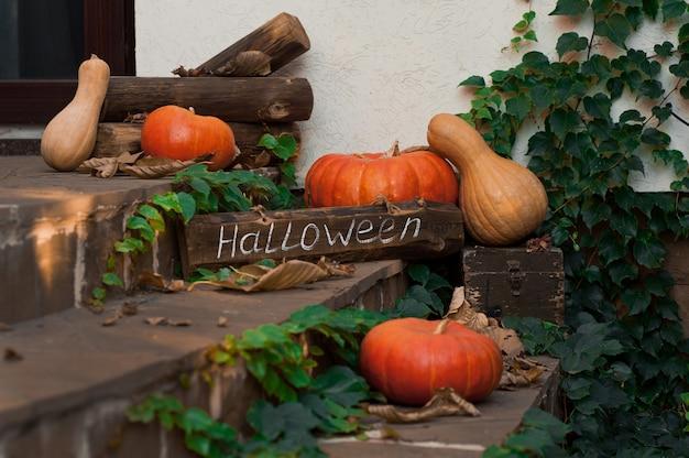 Kürbisse in der haustür zu feiern. halloween. selektiver fokus.