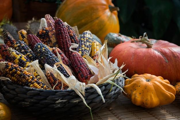 Kürbisse und maiskolben mit bunten samen im strohkorb