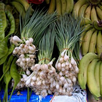 Kürzlich geerntete frühlingszwiebeln bereit, am markt zu verkaufen