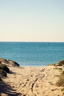 Küstenlandschaft mit dünnem strand und blauem meer