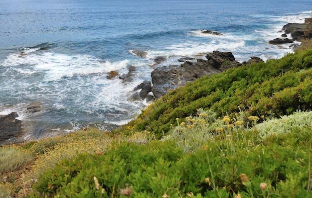 Küstenlinie von cap corsica