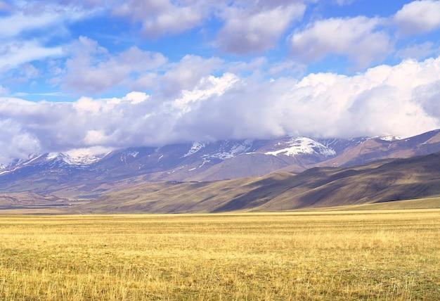 Kurai-steppe im altai-gebirge trockenes gras im frühjahr auf der ebene