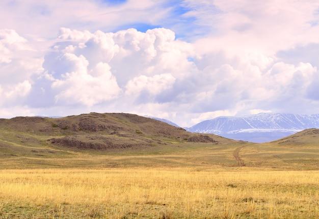 Kurai-steppe in den altai-bergen im frühjahr vor der kulisse der berge