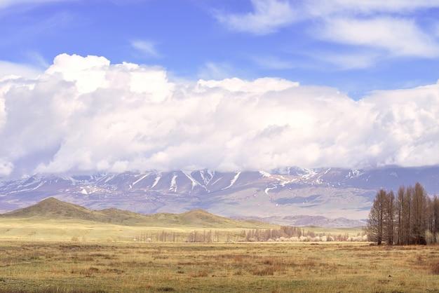 Kurai-steppe in der altai-berge-frühlingsebene vor dem hintergrund der berge