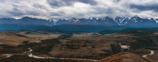 Kurai-steppe und nord-chui-grat