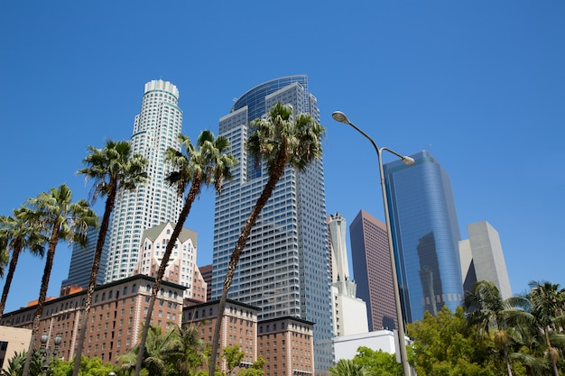 La downtown los angeles pershing square palm locke