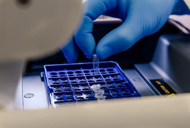 Laborant, der pipettenspitzen in einem blauen behälter für einen coronavirus-test anordnet
