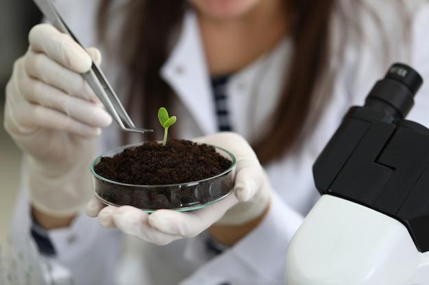 Laborforschung mit viel grün