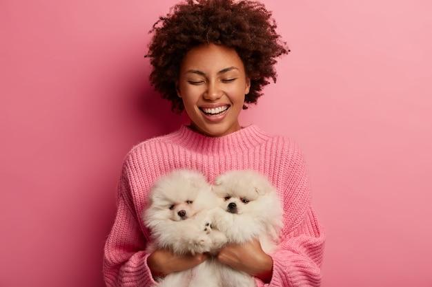 Lachende dunkelhäutige frau hält die augen vor vergnügen geschlossen, trägt zwei flauschige haustiere, genießt schöne zeit, kümmert sich um spitzhunde, lächelt breit, isoliert auf rosa hintergrund.