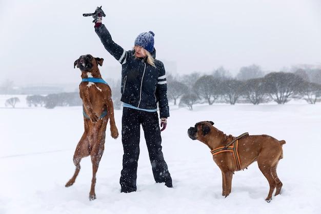 Lachende frau spielt mit boxerhund im winterpark. liebe und freundschaft.