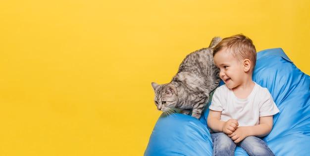 Lachender kleiner junge an einer gelben wand sitzt mit einer katze, die auf einem blauen stuhl sitzt