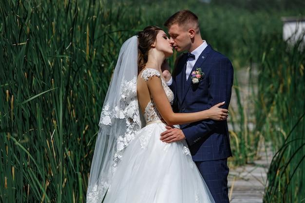 Lächelnde bräute umarmen leicht und küssen draußen. junge paare in der liebe, die andere rach auf dem weg in der natur enjoing ist. glückliche braut und bräutigam geht in hohes gras draußen.