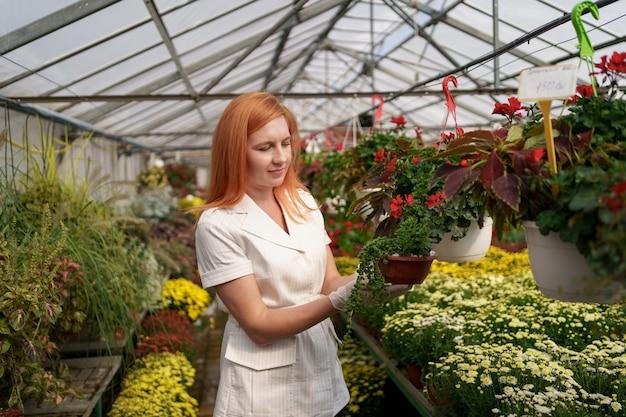 Lächelnde floristin in ihrem kinderzimmer, die topfblumen inspiziert, während sie sich um die gartenpflanzen im gewächshaus kümmert