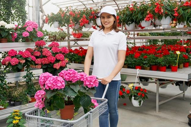 Lächelnde frau mit wagen mit atemberaubender rosa hortensie