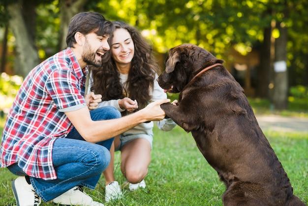 Lächelnde junge paare, die spaß mit ihrem hund im park haben