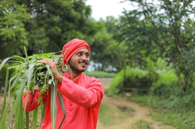 Lächelnder asiatischer bauer, der frisches grünes gras auf seiner schulter trägt, um vieh zu füttern