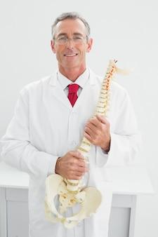 Lächelnder doktor, der skeleton modell im büro hält