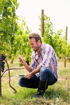 Lächelnder mann, der telefon beim halten der tablette am weinberg verwendet