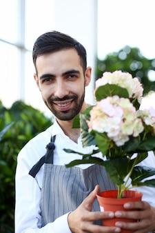 Lächelnder mann-florist mit blumen-hortensie-porträt. netter männlicher gärtner holding blooming hortensia im blumentopf.