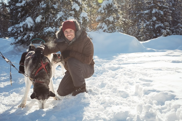Lächelnder musher, der heisere hunde an den schlitten bindet
