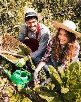 Lächelndes porträt des männlichen und weiblichen gärtners, der im gemüsegarten arbeitet