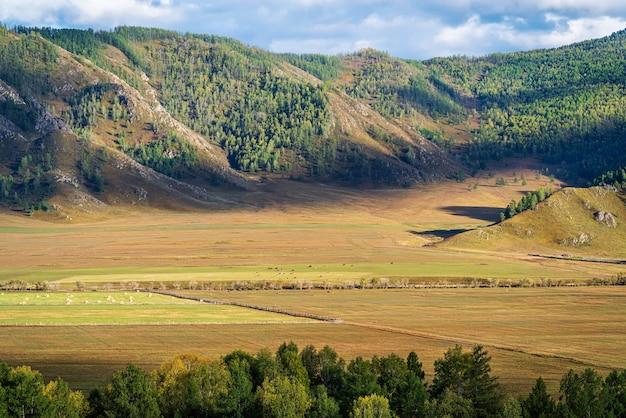 Ländliche berglandschaft im herbst russland berg altai