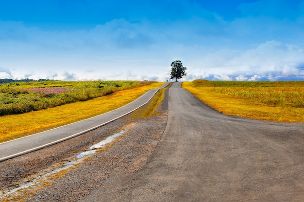 Ländliche einspurige wüstenstraße in thailand durch die landschaft mit schönem himmel.