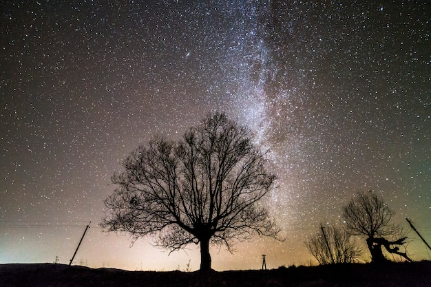 Ländliche landschaft bei nacht.