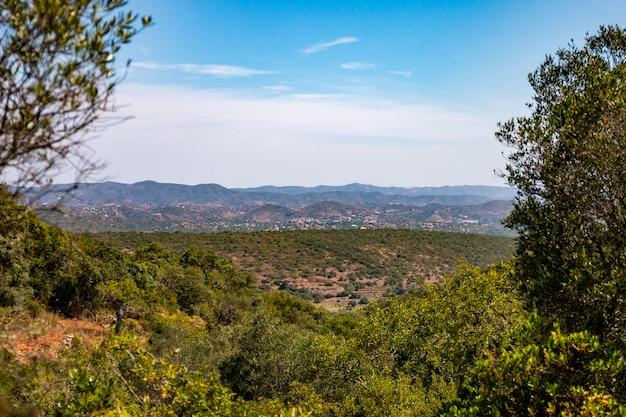 Ländliche landschaft der algarve-region in der nähe von jordana, portugal.