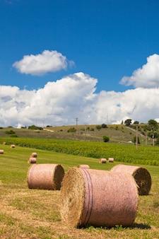 Ländliche landschaft mit ackerland und strohballen in der provence, frankreich. selektiver fokus