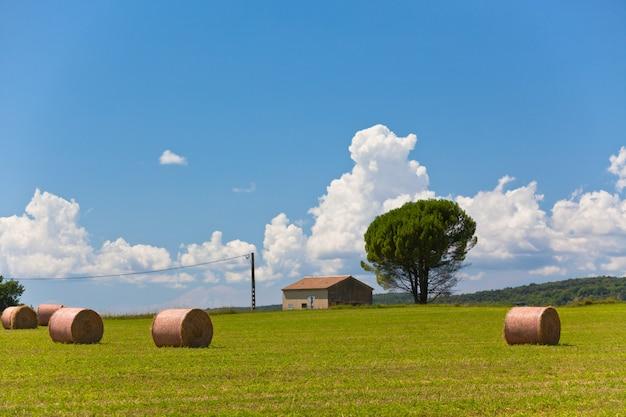 Ländliche landschaft mit ackerland und strohballen in der provence, frankreich