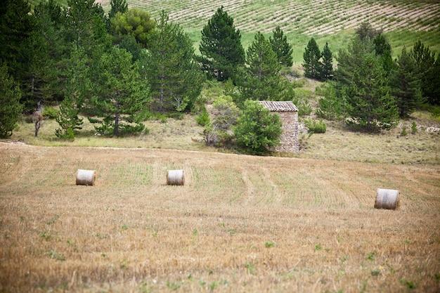 Ländliche landschaft mit bauernhof- und strohballen in der provence, frankreich. aufnahme mit selektivem fokus