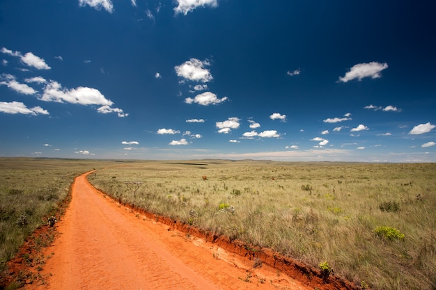 Ländliche orange feldweg mit blauem himmel und fernem horizont