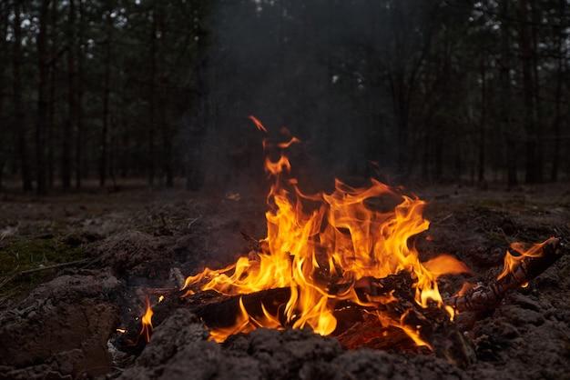 Lagerfeuer im wald bei nacht
