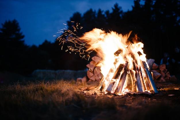 Lagerfeuer im wald in der abenddämmerung