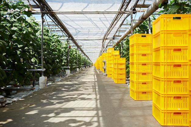 Lagerung von vegetation
