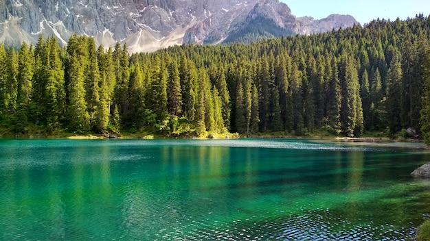 Lago di carezza (karersee), ein schöner see in den dolomiten, trentino südtirol, italien