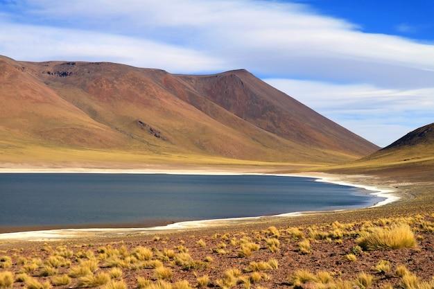 Laguna miniques ist der see neben der laguna miscanti
