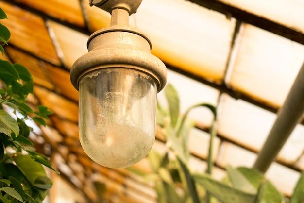 Lampe im botanischen garten