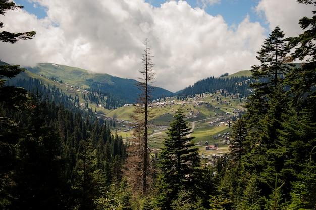 Landschaft der berge bedeckt mit wald und häusern auf den hügeln im vordergrund von immergrünen bäumen