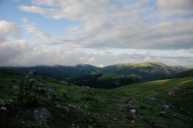 Landschaft der berge bedeckt mit wald unter den wolken im vordergrund des grünen feldes