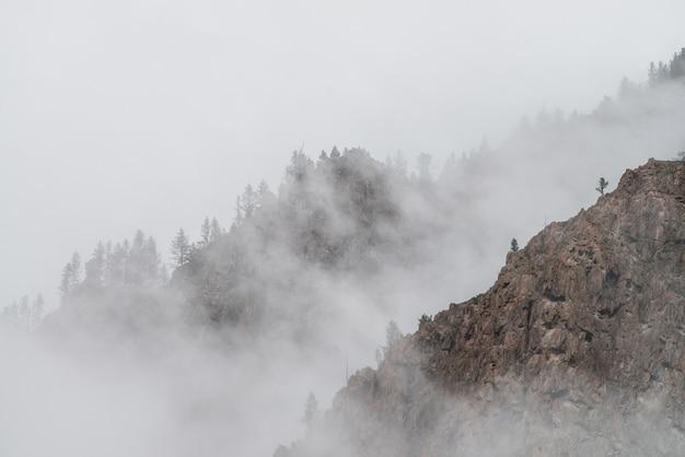 Landschaft der berge mit nebel